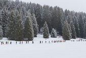 Lavarone Nortec Winter Trail Giacomo Meneghello GM 17 5154