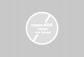 AP 3113